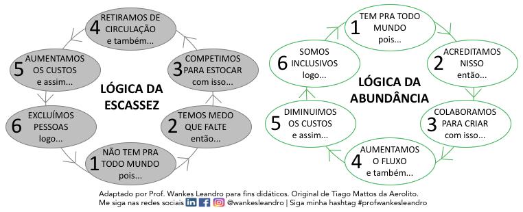 Lógica da escassez e da abundância, Prof Wankes Leandro