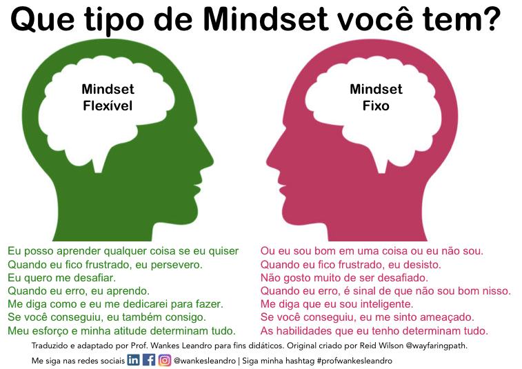 mindset flexível, mindset fixo, prof wankes leandro