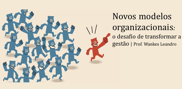 Novos modelos organizacionais, Prof Wankes Leandro