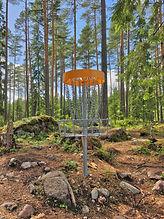 22105751-a-disc-golf-basket-in-a-forest.jpg