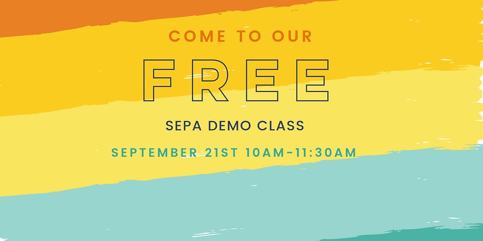 SEPA Demo Class