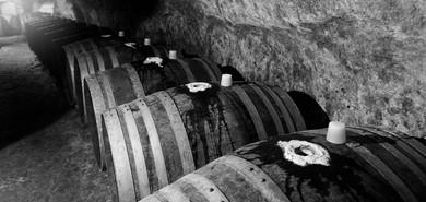 kreazim kazim dubovski photographe saumur varrains puis notre dame vin vigneron domaine des guyons cave