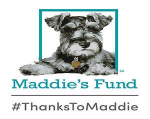 thanks-to-maddie-300x238.jpg