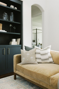 Living room design featuring dark builti