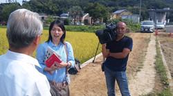 NHK国際放送局.jpg