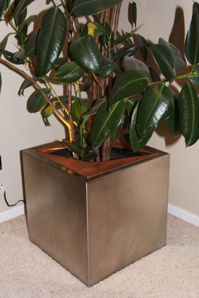 Ridigized Stainless Steel Planter