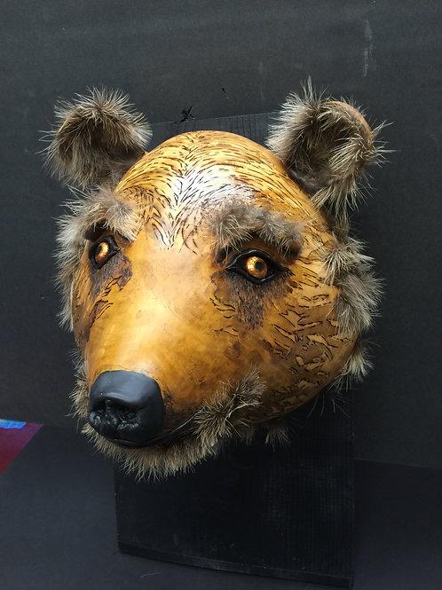 Sonoran Brown Bear
