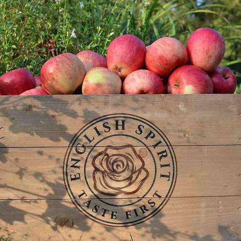 apples in ES crate.jpg