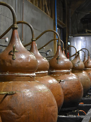 Copper stills on the English Spirit distillery tour