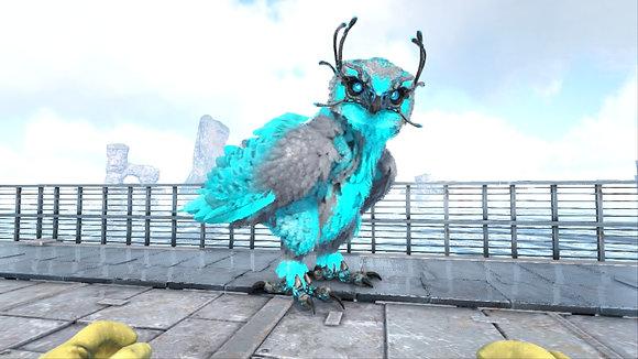 Top Stats Snow Owl Cyan-Black