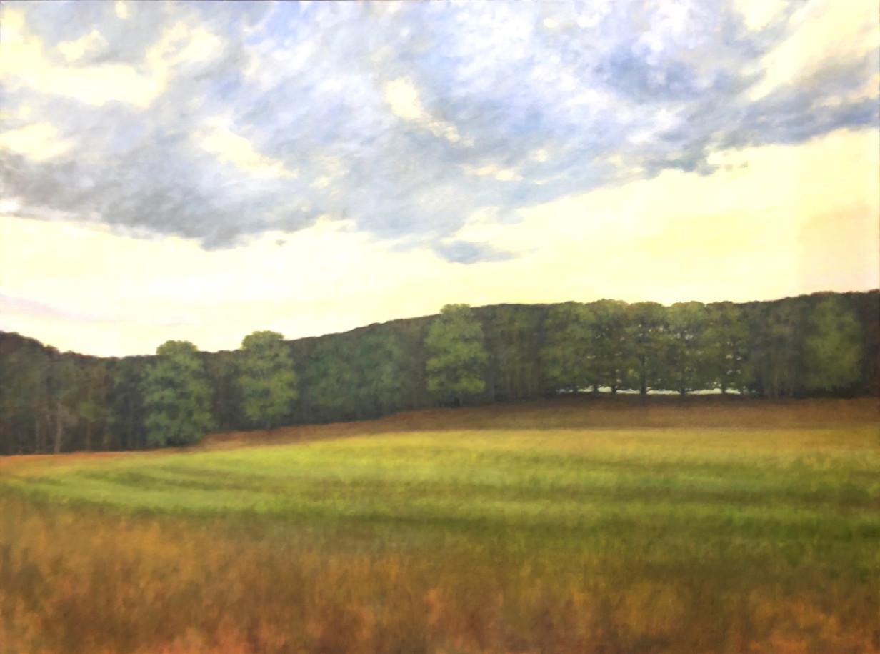 "Oil on Canvas 30x36"""