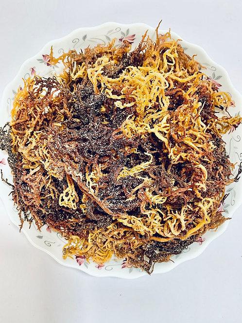 100% Natural Wildcrafted Purple Irish moss aka Sea Moss