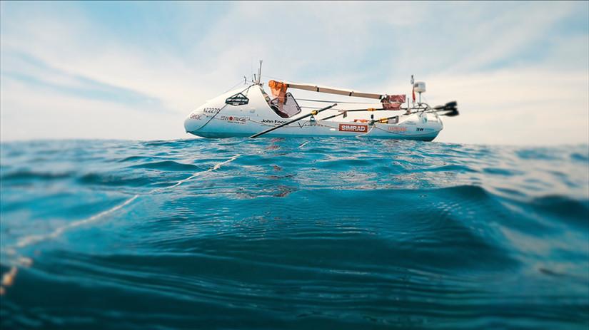 SIMPSON'S DONKEY FLORES SEA.jpg