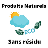 Eco logo 2.png