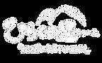ひらくロゴ のコピーe2.png