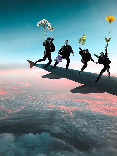 Flying Beatles