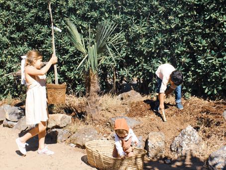 O início do nosso jardim.