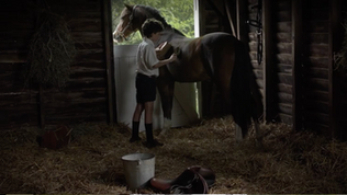 Billy horse stall.png