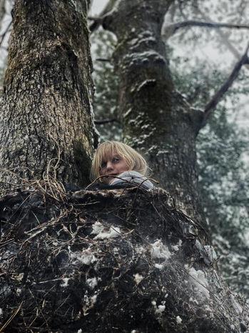 Tree Nest.jpg