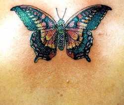 About 15 colors in tattoo.