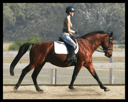 Biancas first ride on Bill 2012