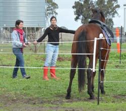 Pauline, Camille and Legardo