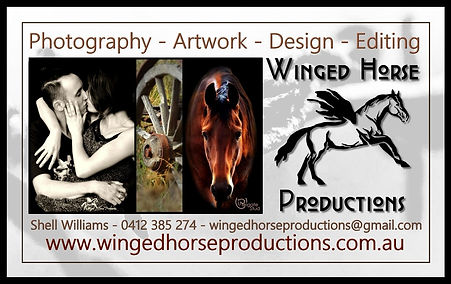 VP Business Card Layout whp small.jpg