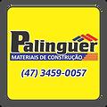 PALINGUER A2019.png