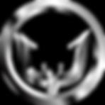 team icon - Gobur1N _CSGO.png
