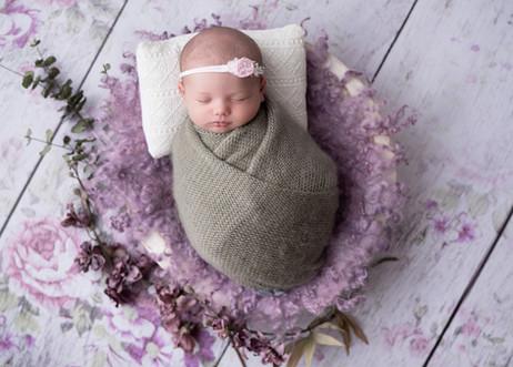 newborn-photographer-ottawa-floral-set.j