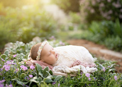outdoor-newborn-ottawa-photographer