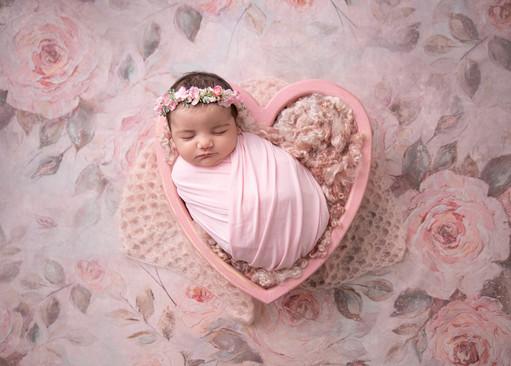 ottawa-newborn-photographer-valentine-he