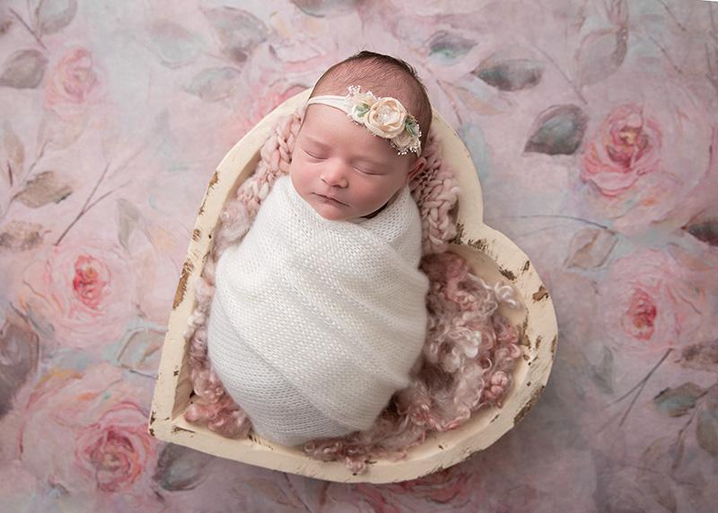 newborn roses