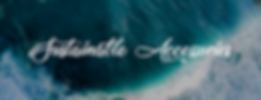 sustainable accessories banner 2.png