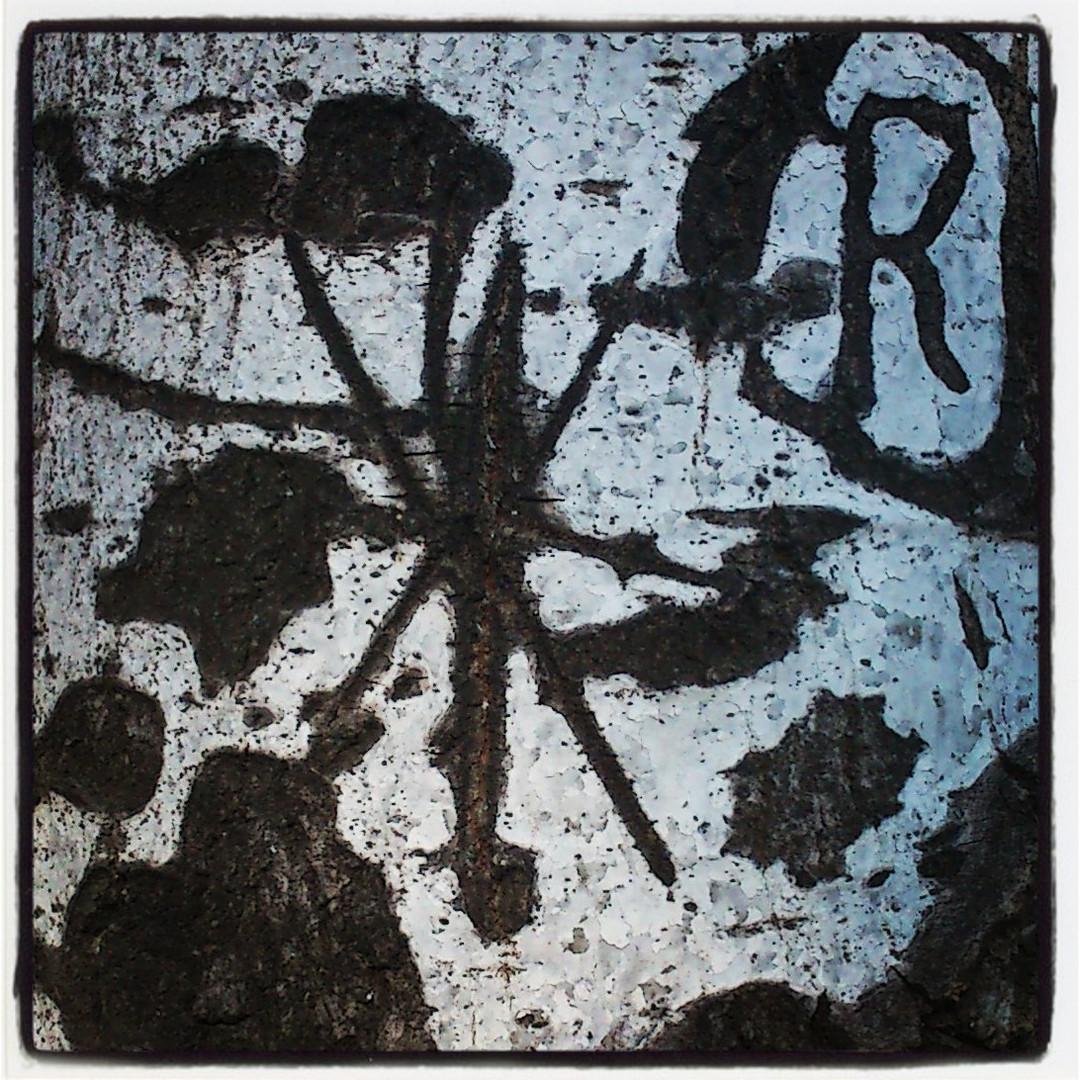 Podria ser art contemporani... però són talls a l'escorça d'un arbre