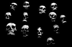 5-morfologia-della-fiaba