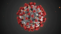 coronavirus-4-.jpg