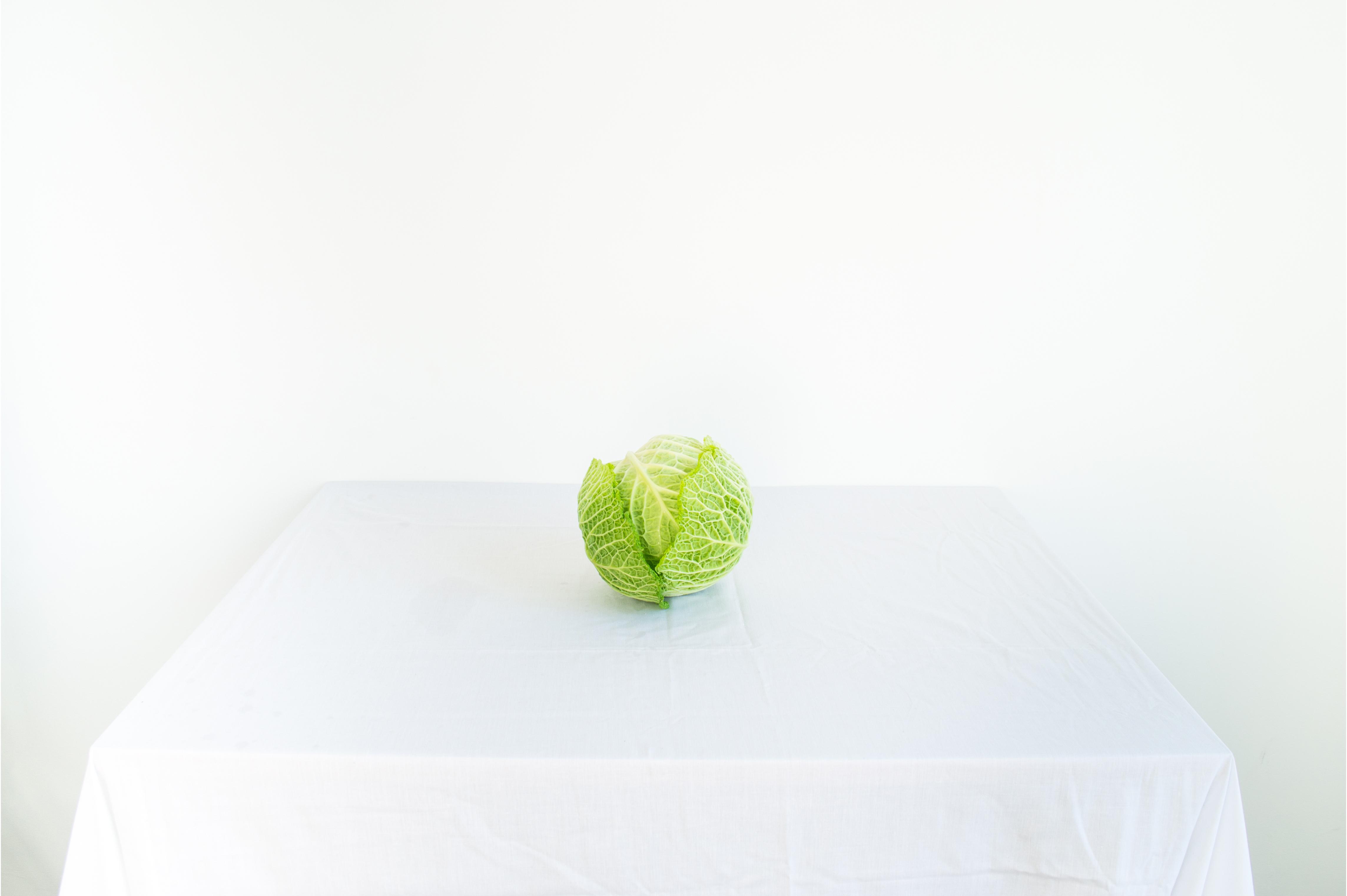 lettuce-photograph-still life