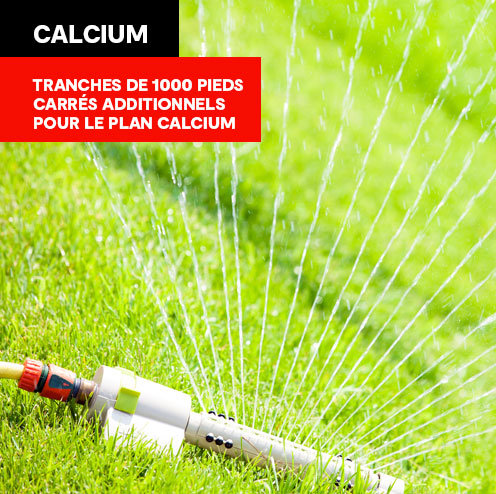 Calcium - Tranches de 1000pi2 additionnels