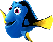 Dory Inflatable Rentals