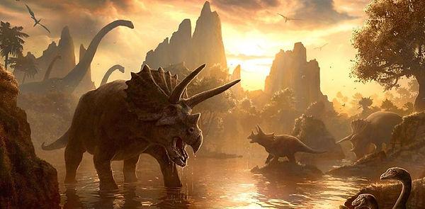Dinosaur Land bouncers