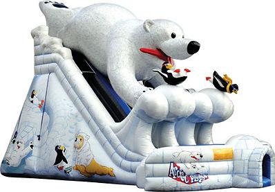 Polar Plunge Giant Slide Rentals