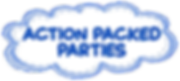 Action Packed Parties Event Planner