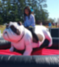 Mechanical Bull Dog Rental