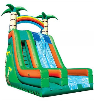 Giant Dry Corporate Carnival Event Slide Rental