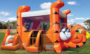 Tiger Belly Corporate Carnival Event Rental