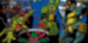 TMNT (aka) Teenage Mutant Ninja Turtles Infaltable bouncer rentals