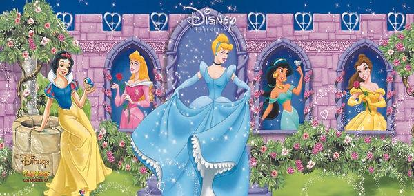 Rent Disney Princess Jumpers