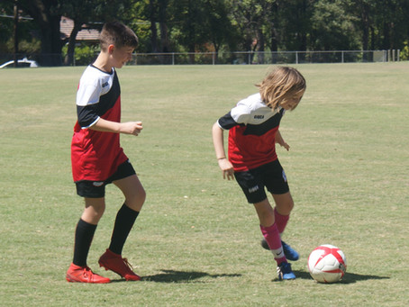 Try Football with Macquarie Dragons!