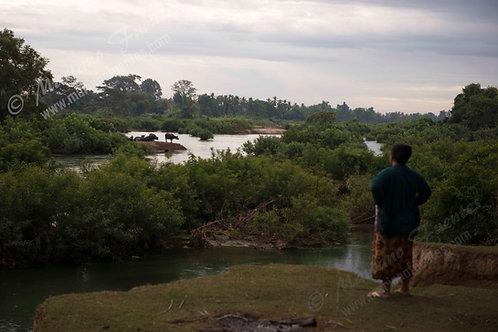 Mekong river view